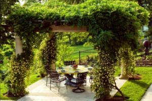 Беседка украшенная живой изгородью из растений и цветов